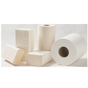 Paper Towel Refills and Rolls