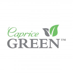 Caprice Green Lunch Napkin 1 Ply 300mm x 300mm